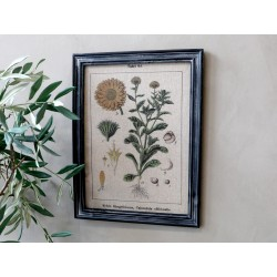 Picture w. floral motif & black frame