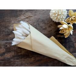 Fleur dried Lagurus Flowers