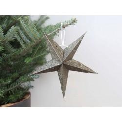 Vintage (X20) Paper star