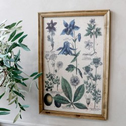 Picture w. floral motif & nature frame