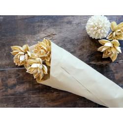 Fleur dried Dahlia Flowers