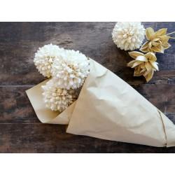 Fleur dried Snowball Flowers