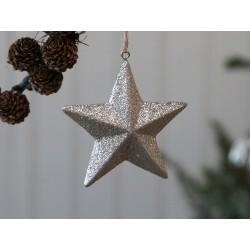 Star (X20) w. glitter