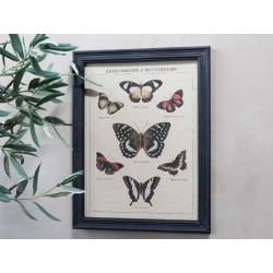 Picture w. butterfly motif & black frame