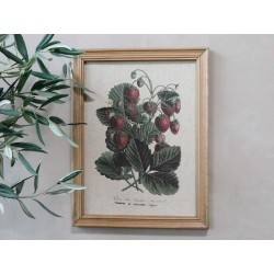 Picture strawberry motif & nature frame