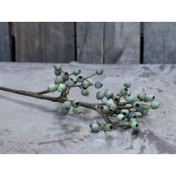 Fleur Branch w. seed capsules