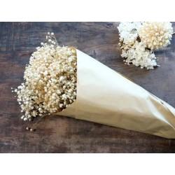 Fleur dried Baby's Breath Flowers