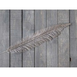Feather w. glitter